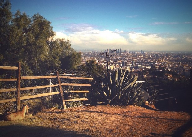 runyon-canyon-closing