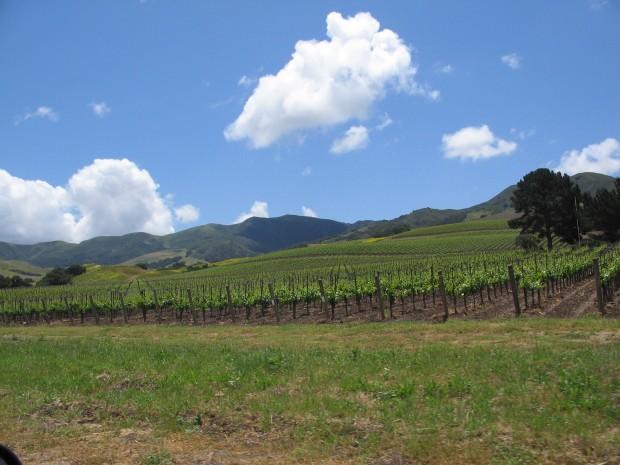 Santa_Ynez_Valley