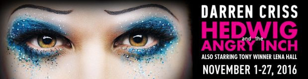1464121438_h_975x250-hedwig-new