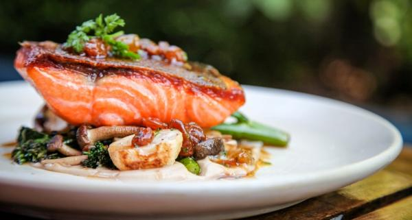 salmon-home-banner_reference